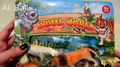 Animals Toy Collection Toys Display Video for Children