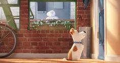 #Pets – A Vida Secreta dos Bichos   Cão precisa dividir a atenção da dona em novo trailer