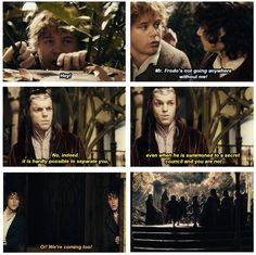 Lord Of The Rings Pippin Quotes | The Lord Of The Rings: The Fellowship Of