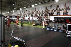 Gym Ufc gym Coaches Corner
