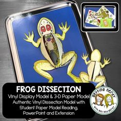 Our vinyl models are FINALLY here! Frog anatomy just got a little more interesting with our innovative vinyl dissection models that mirror our student paper models. In the digital version, students color, cut, and assemble their own foldable, dissectible specimens.