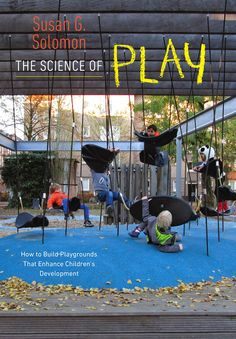 UPNE Blog: Saving the American Playground From Itself