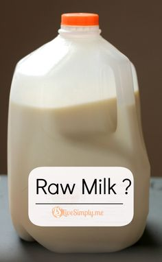 What's the Big Deal with Raw Milk? Is it safe? Where to get it? Is organic really a good option?  | Live Simply