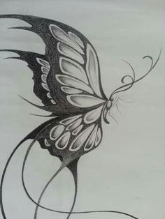 Sketch Butterfly Drawing - Original Design Of A Large Butterfly Butterfly Sketch Beautiful Drawing Art After Being Rejected By Galleries Artist Butterfly Flower By Davepinsker O. Pencil Art Drawings, Art Drawings Sketches, Tattoo Drawings, Cool Drawings, Body Art Tattoos, Pencil Drawings Of Flowers, Drawing Faces, Key Tattoos, Ribbon Tattoos