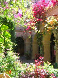 Love, want, need this courtyard garden!!