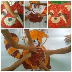 Ci prepariamo con largo anticipo all'International Red Panda Day #parconaturaviva #guidebiosphaera #centriestivi