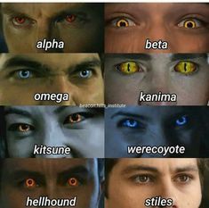 Teen Wolf Scott, Teen Wolf Mtv, Teen Wolf Boys, Teen Wolf Dylan, Teen Wolf Stiles, Dylan O'brien, Teen Wolf Memes, Teen Wolf Imagines, Teen Wolf Quotes