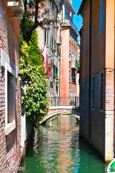 Canal Houses in Venice - Italy