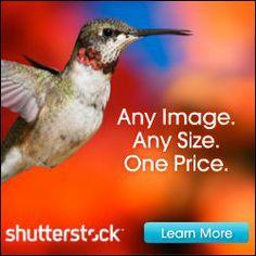 Shutterstock Stock Photos