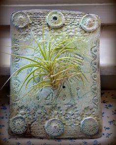 Tillandsia and raku Vase, Home Decor, Decoration Home, Room Decor, Vases, Home Interior Design, Home Decoration, Interior Design, Jars