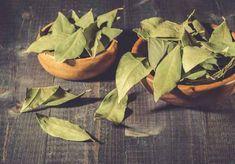 Health And Beauty, The Secret, Vegetables, Food, Case, Romania, Palmas, Diet, Plant