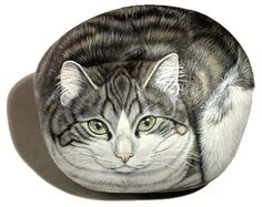 White and Grey Painted Rock Cat