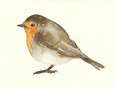 bird watercolor - beautiful