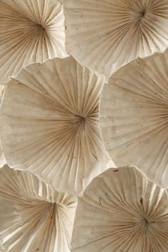 island of silence - Concept Vintage Sand - The color concept VINTAGE SAND combines a sand / beige tone with delicate and darker shades of blue - Textures Patterns, Color Patterns, Dried Flowers, Paper Flowers, Paper Leaves, Color Concept, Beige Aesthetic, Origami Art, Origami Design