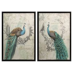 Bring exotic style to your living room or master suite with this framed canvas print, showcasing an eye-catching peacock motif and typographic details. ...