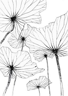 25 ideas flowers drawing doodles inspiration zentangle patterns drawing flowers is part of pencil-drawings - pencil-drawings Doodle Drawing, Doodle Art, Art Floral, Floral Design, Silk Painting, Painting & Drawing, Drawing Drawing, Doodle Inspiration, Flower Art