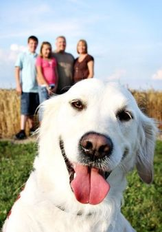 """What a wonderful picture of a """"man's best friend"""" and his family... what a lucky dog!"""