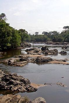 Epulu River in the Okapi Wildlife Reserve, Democratic Republic of the Congo