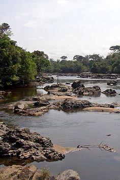 Epulu River in the Okapi Wildlife Reserve, Democratic Republic of the Congo