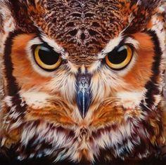 Bubo Virginianus - Great Horned Owl, painting by Evan Higgins Jones Beautiful Owl, Animals Beautiful, Owl Bird, Pet Birds, Owl Eyes, Owl Pictures, Great Horned Owl, Owl Print, Tier Fotos