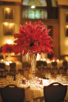 Elegant red floral centerpieces | Sarah DicCicco Photography