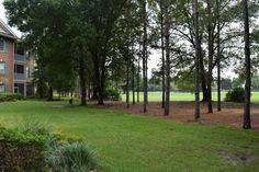 785 OAKLEAF PLANTATION PKWY Unit 113, Orange Park , 32065-3535 Florida For Sale #home904 #magnoliaproperties