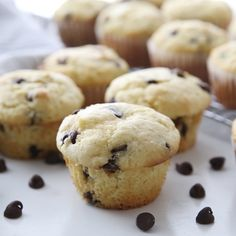 Tastes Better From Scratch This easy Chocolate Chip Muffins recipe is a staple muffin recipe that deserves a permanent spot in your cookbook! They're fluffy, moist and the best ever! Homemade Chocolate Chip Muffins, Chocolate Chip Cupcakes, Chocolate Chip Recipes, Moist Chocolate Chip Muffins, Cake Chocolate, Muffin Recipes, Cupcake Recipes, Baking Recipes, Dessert Recipes