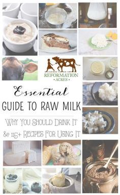 You haven't had real milk til you've had raw milk! Learn why you should drink it and get 115 recipes to try in this Essential Guide to Raw Milk! Goat Milk Recipes, No Dairy Recipes, Raw Food Recipes, Healthy Recipes, Beef Recipes, Chicken Recipes, Dinner Recipes, Kefir, Food Storage