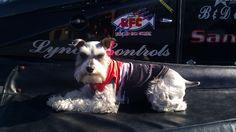 Coco in her Hydrochondraic racing uniform
