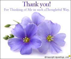 Thank You Note To Friend Messages Birthday Thanks Message Phrases Wishes