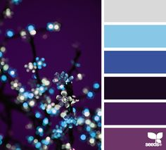 'color sparkle' via Design Seeds - purple and blue color palette Colour Schemes, Color Combos, Color Patterns, Colour Palettes, Color Concept, Color Palate, Colour Board, World Of Color, Color Swatches