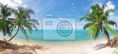 Wall Mural panoramic tropical beach with coconut palm