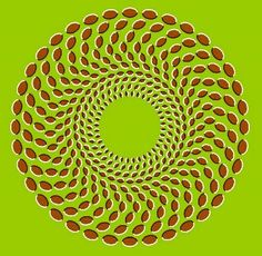 "These things just keep on rotating.. amazing! This still fascinates me, even though I posted bunch of them! Optical Illusions rock! Still, I think ""Rotating Snakes Illusion"" is still the best!"