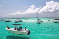 Stingray City  Georgetown, Grand Cayman