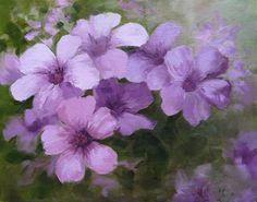 Very Verbena by Teddy Jackson, Oil