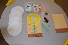 plant part craft - Yahoo Search Results