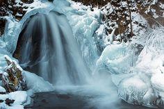 Winter veils