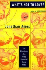 What's Not To Love ? by Jonathan Ames