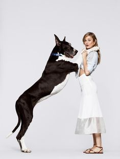 Giant Dogs, Great Dane Dogs, Types Of Animals, Two Best Friends, Animal Quotes, Summer 2014, Animal Photography, Cole Haan, Bugs
