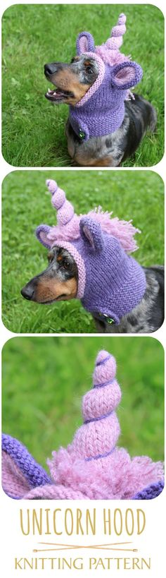 Unicorn hood for a mini dachshund! LOL! #dogclothes #doghat #littledog #smalldoghat #petclothes #dachshund #dachshundclothes