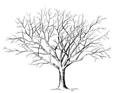 Home Decorating Style 2020 for Arbre Sans Feuille Coloriage, you can see Arbre Sans Feuille Coloriage and more pictures for Home Interior Designing 2020 3666 at SuperColoriage. Vintage Printable, Free Printable, Thumbprint Tree, Tree Clipart, Leaf Drawing, Drawing Trees, Drawing Art, Wind Drawing, Tree Drawings