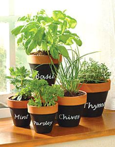 Paint clay pots with chalk board paint, write the names of the plants in chalk, plant the herbs.