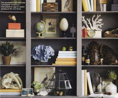 All About Vignettes: Turtle Shells as Interior Design Art