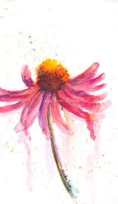Fiesta pink Echinacea Blossom by CheyAnne Sexton - watercolor 6x10 ORIGINAL… Watercolor Cards, Watercolor Print, Watercolour Painting, Watercolor Flowers, Watercolor Journal, Watercolor Ideas, Painting Flowers, Watercolor Landscape, Art And Architecture