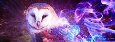 Get this Owl Abstract Art Facebook Covers for your profile from Get-Covers.com.