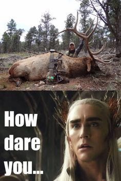 I am Thranduil. You killed my moose. Prepare. to. die. <<pinning for that comment
