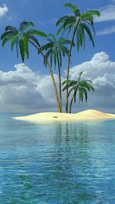 Beach Landscape With Palm Tree wallpaper. Cool Pictures, Beautiful Pictures, Beach Scenes, Tropical Paradise, Paradise Travel, Tiny Paradise, Ocean Beach, Belle Photo, Beautiful Beaches