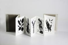 Of Bunnies and Botany by Remy Zimmerman - illustrated handmade accordion book