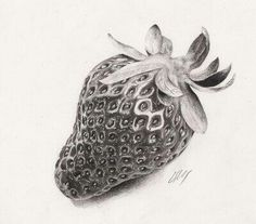 Very detailed strawberry ' Pencil Sketch Drawing, Realistic Pencil Drawings, Pencil Shading, Graphite Drawings, Art Drawings Sketches, Pencil Art, Fruits Drawing, Food Drawing, Candy Drawing