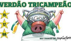Palmeiras - Tri Campeão da Copa do Brasil